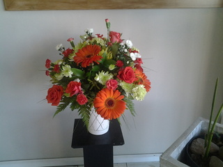arrangement in pot11 r300
